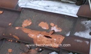 Dachreparatur Dachwartung Inspektion Dachschaden Sturmschaden 60385