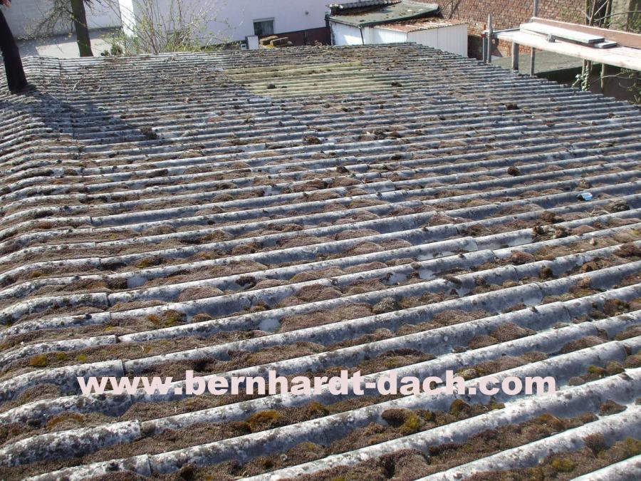 Berühmt F. Bernhardt Bedachung GmbH - Arbeiten an Asbestdächern #CT_56